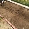 庭のメンテナンスも自然体験。ちょっと出遅れたけど夏に向けて菜園スペースをメンテ。巨大化していたパセリもついに抜いたよ!