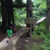 日本の秘境100選のひとつ、新潟県の秋山郷にある吊り橋「見倉橋」に行ってきたよ!水めっちゃキレイ!