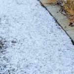 雪遊びできるかな?雪見ドライブに便利な積雪情報サイト!