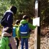 家族揃って府民の森ほしだ園地の吊り橋(星のブランコ)へ!子連れファミリーでも楽しめるハイキングコースです。