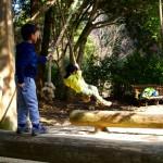 2歳児を連れて甲山森林公園&甲山へハイキング!途中のターザンコーナーが子供達に好評でした!