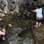 一泊キャンプの前哨戦として、七谷川へデイキャンプに行ってきたよ!川遊びするつもりが、川が枯れていたよ!