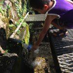 暑い日こそ、冷たい湧き水を飲みに行こう!亀岡の「乳の泉」名水で喉を潤すドライブへ!