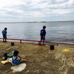 たまには魚釣りへ。鳴尾浜海浜公園の魚釣り場でサビキ釣り。サバを大量ゲット!